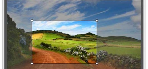 Customise the pictures in your issues with App Studio by setting up parameters for interactive behaviour, such as panning and zooming.