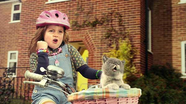 Three-Sing-It-Kitty-60sec_still4