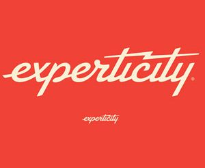 2D version of new Experticity logo.