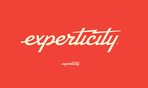 2D version of the new Experticity logo