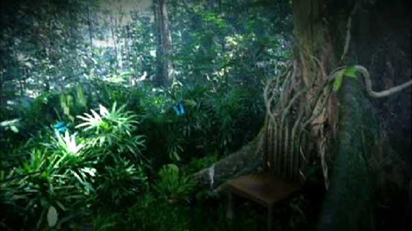 treechair
