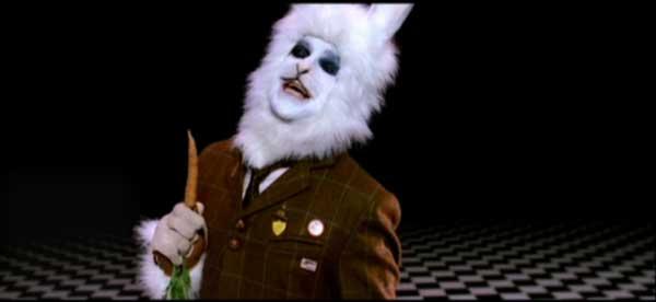 RabbitRobbie